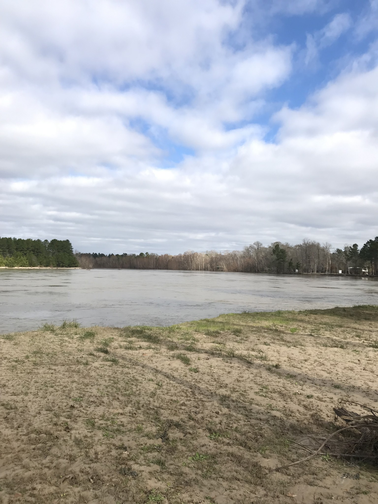 365 Roy Thompson Rd. Sabine River Tract, Beauregard Parish, 3 Acres +/-
