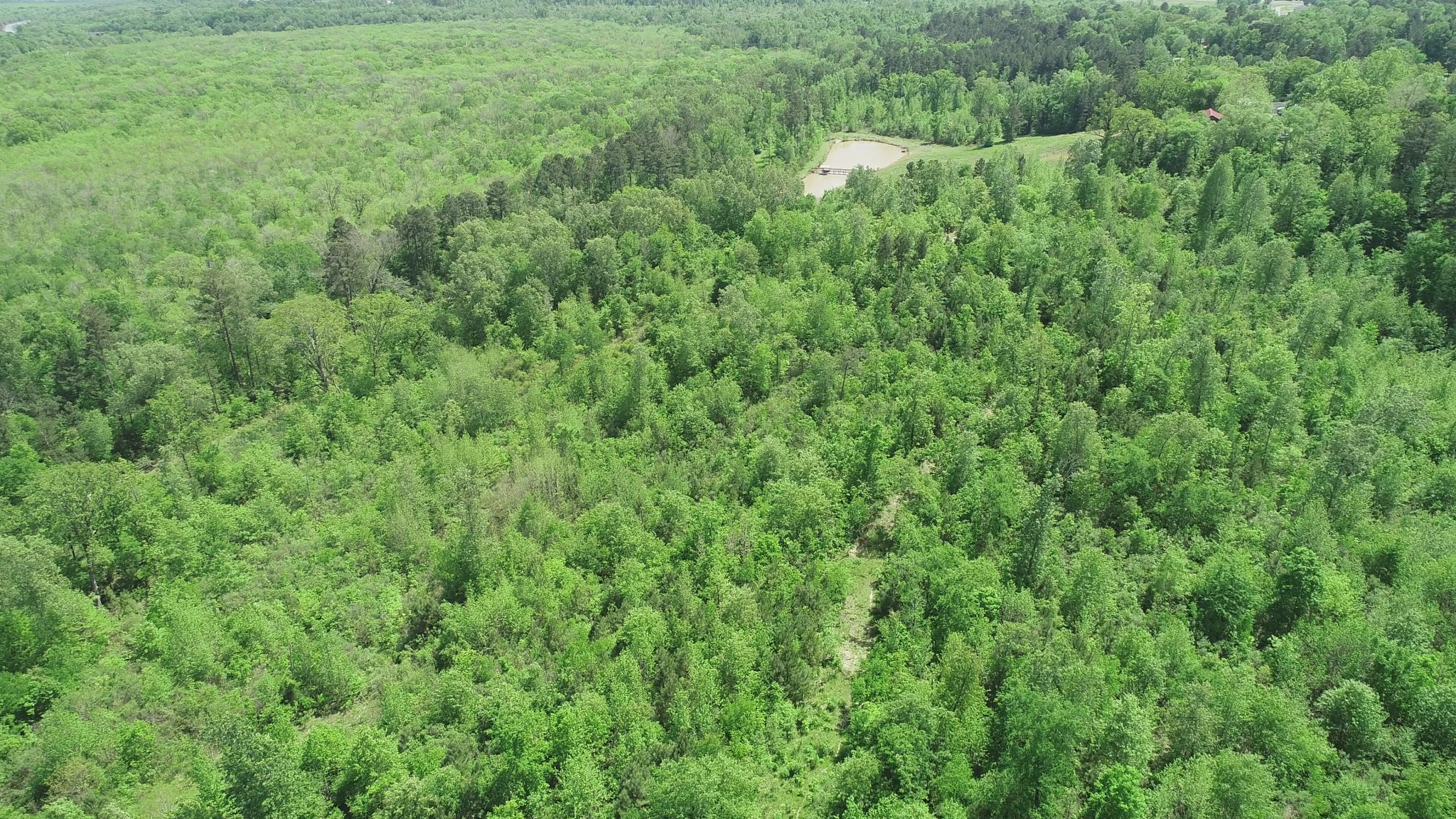 The Bluff at the Refuge Tract, Caddo Parish, 52 Acres +/-