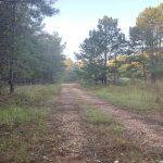 Caddo Parish Recreational property for sale
