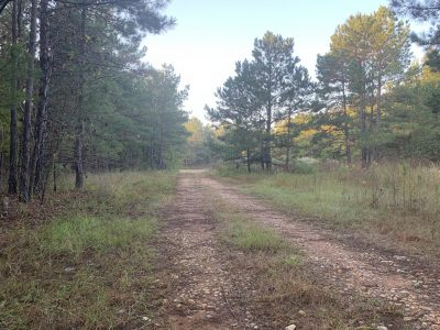 Caddo Parish Recreational property for sale