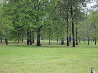 Union Parish Development land for sale