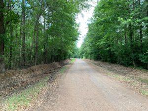 Denim Tract, Jackson Parish, 32 Acres +/-