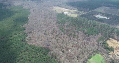 Fallin Farm Tract, Lincoln Parish, 200 Acres +/- LALINCJP200