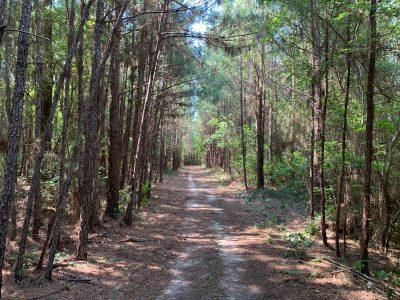 Union Parish Recreational property for sale
