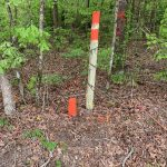Hunting property for sale in Jackson Parish