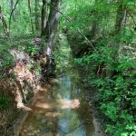 Lincoln Parish Recreational property for sale