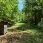 Lincoln Parish Hunting land for sale