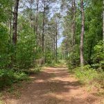 Recreational property for sale in Lincoln Parish