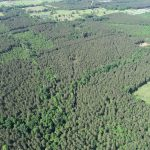 Lincoln Parish Hunting property for sale