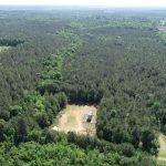 Hunting land for sale in Lincoln Parish