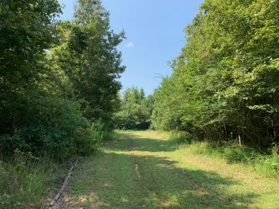 Ashley County Recreational land for sale