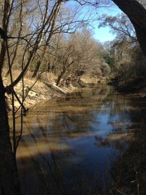 Recreational land for sale in Beauregard Parish