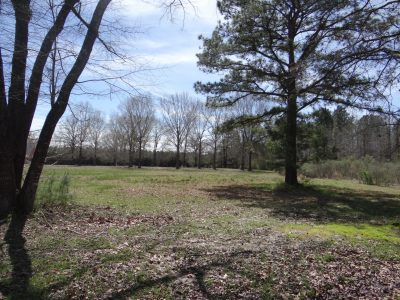Agricultural land for sale in Webster Parish