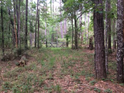 Rapides Parish Development property for sale