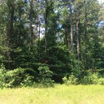 Recreational property for sale in Natchitoches Parish