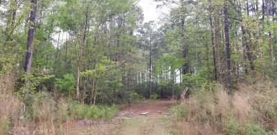 Timberland property for sale in DeSoto Parish