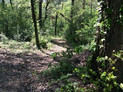 Residential property for sale in Grant Parish
