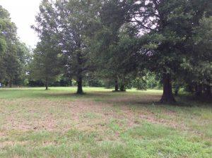 Acme Campground at JJ Pruitt Road, Concordia Parish, 8 Acres +/-