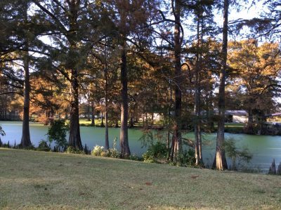 Concordia Parish Residential property for sale