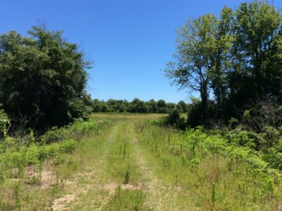 Tensas Parish Recreational land for sale