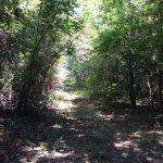 La Salle Parish Recreational land for sale