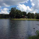 La Salle Parish Timberland property for sale