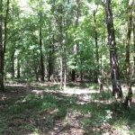 Recreational property for sale in Hinds County