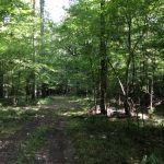 Investment property for sale in Hinds County