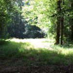 Recreational land for sale in Hinds County