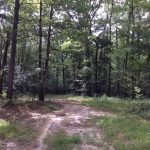 Hinds County Investment land for sale