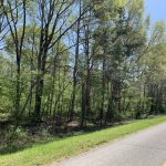 Caldwell Parish Timberland for sale