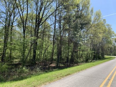Caldwell Parish Timberland for sale