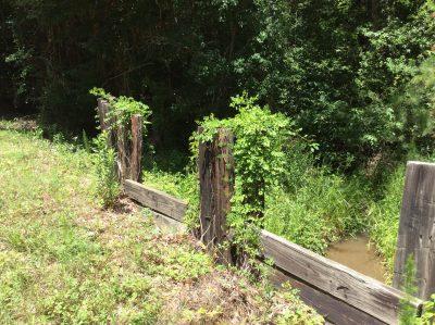 Beauregard Parish Agricultural land for sale