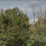 St. Mary Parish Investment property for sale