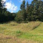 Calcasieu Parish Agricultural land for sale