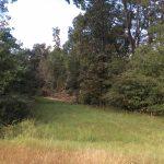 Development property for sale in Calcasieu Parish