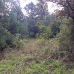 Recreational property for sale in Calcasieu Parish