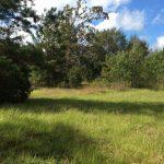 Calcasieu Parish Investment land for sale