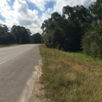 Timberland property for sale in Calcasieu Parish