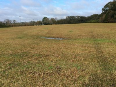 Investment property for sale in St. Landry Parish