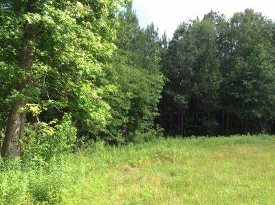 Beauregard Parish Recreational land for sale