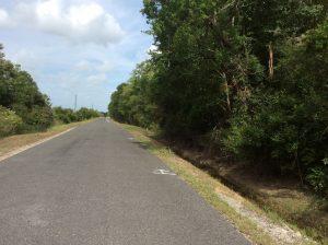 Abie Fontenot Road Tract, Jefferson Davis Parish, 18 Acres +/-