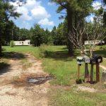 Timberland for sale in Beauregard Parish