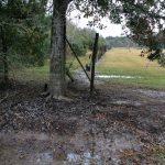 Calcasieu Parish Recreational land for sale