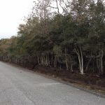 Agricultural property for sale in Calcasieu Parish