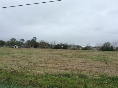 Vincent Road Tract, Cameron Parish, 1.4 Acres +/- LACAMEPP1