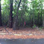 Beauregard Parish Agricultural property for sale