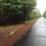Recreational property for sale in Beauregard Parish