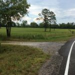 Calcasieu Parish Agricultural property for sale