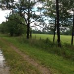 Calcasieu Parish Investment land for sale